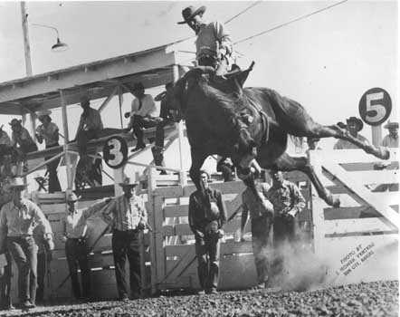Gerald Roberts riding A Wild One - Strong City, Kansas (photo by J. Homer Venters)